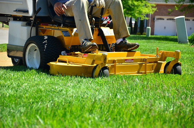 Lawn Maintenance Lawn Care Lawn Services